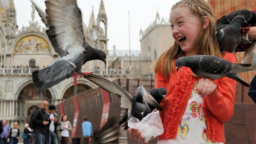 Девочка с птицами.