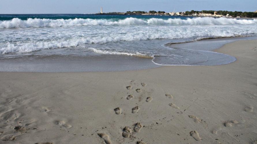 Прибрежные волны.