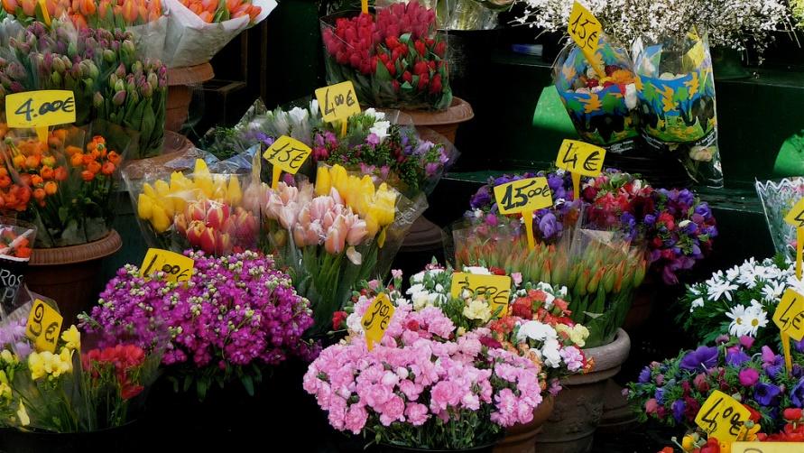 prodaxha-cvetov