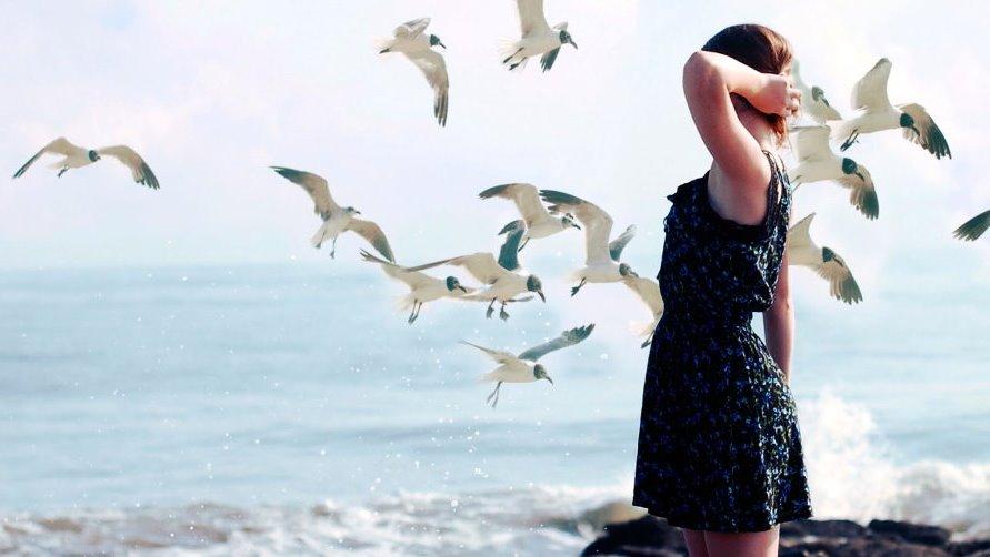 Девушка и чайки