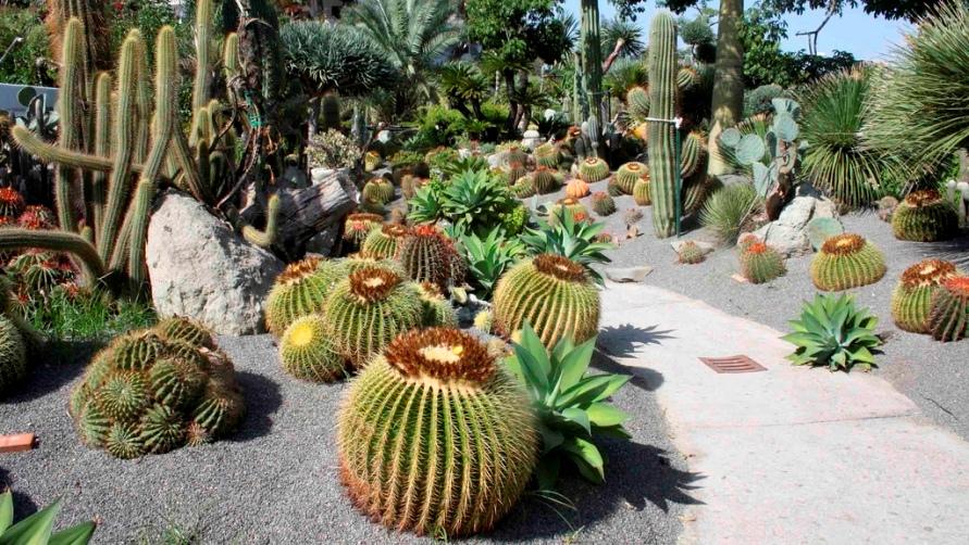 Сад Ravino