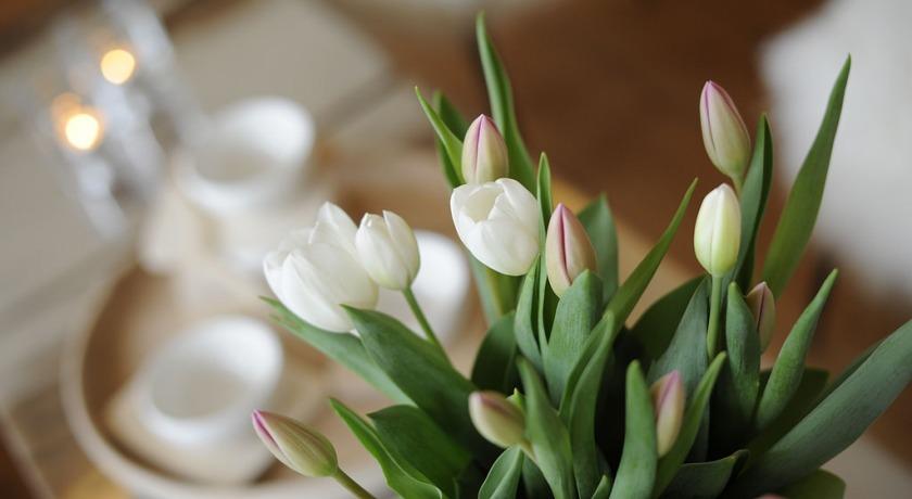 Цветы в номере