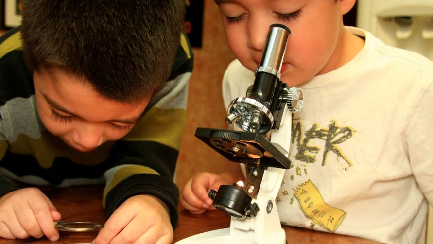 Дети смотрят в микроскоп.