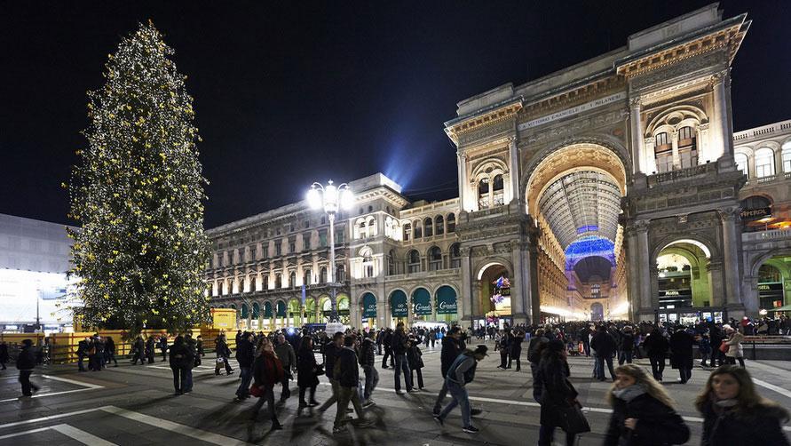 Новогодняя ёлка в центре города.